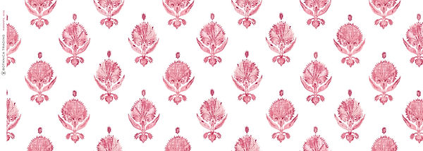 KARANFIL_PERFECT Rose.jpg