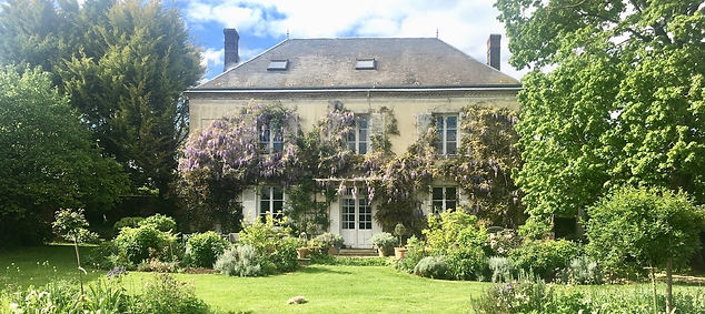 my-french-country-home-wisteria.jpg