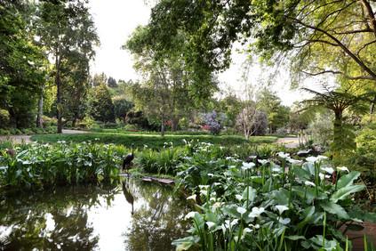 Garden of St Christopher, desig Debby Tenquist
