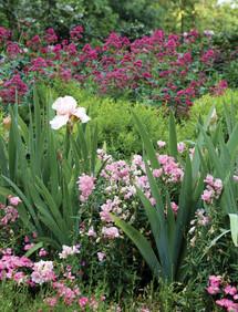 Garden of St Christopher, design Debby Tenquist