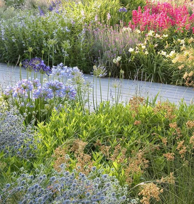 Prairie garden designed by Debby Tenquist