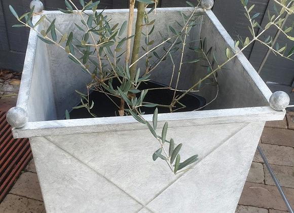 Versaille galvanised planter