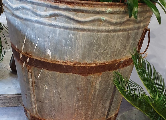 Authentic Olive Harvest Pot