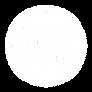 PW Logo White.png