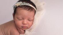 Noblesville, IN Newborn Photographer