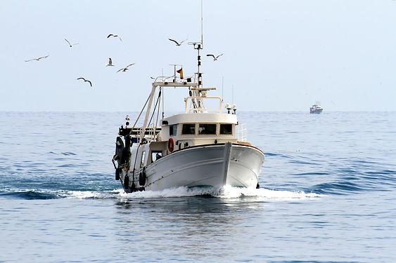 Trawler fishing boat sailing in open wat