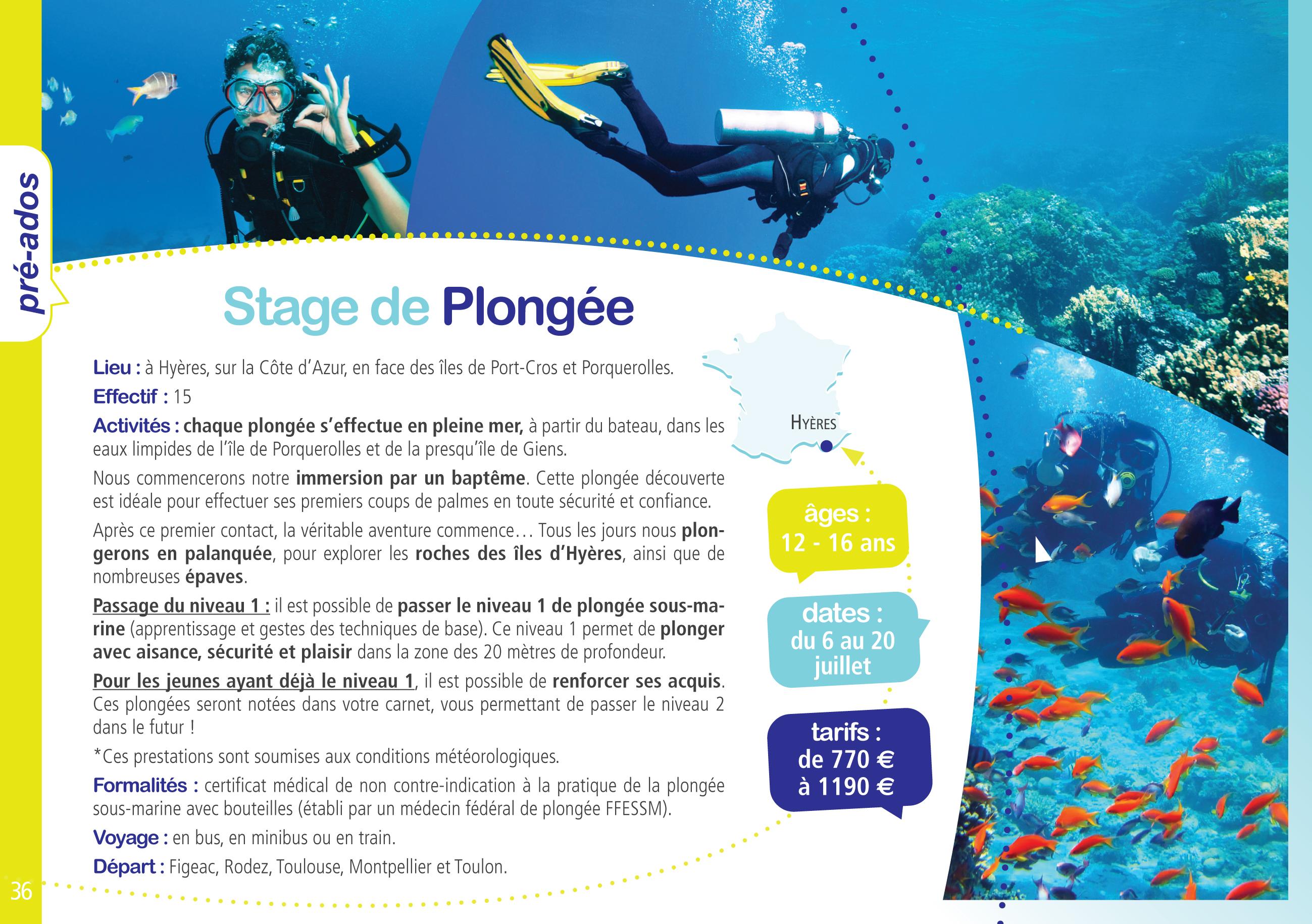 plongee