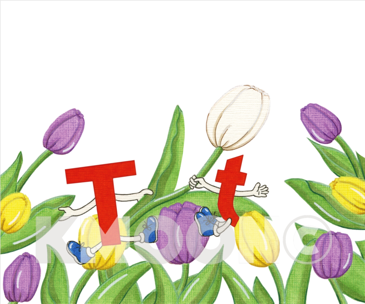 Tt is for tulip