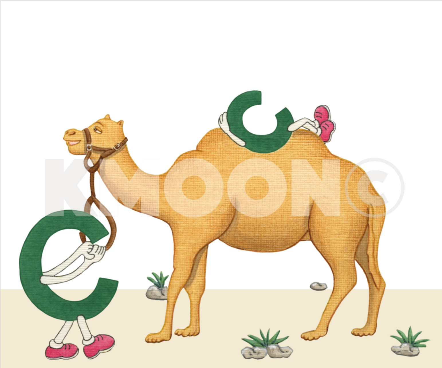 Cc is for ... camel