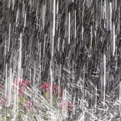 Tanz im Regen.