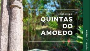 Condomínio Quintas do Amoedo