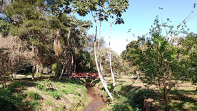 População que frequenta o lago de Nogueira pede infraestrutura