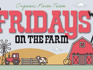 Fridays on the Farm