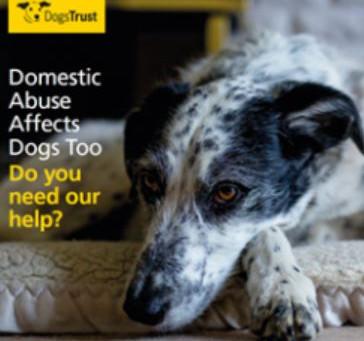 Dogs Trust Fostering Service