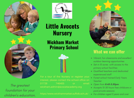 Reception class intake 2021 & Little Avocets Nursery at Wickham Market Primary School