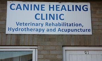 Canine Healing Clinic.JPG