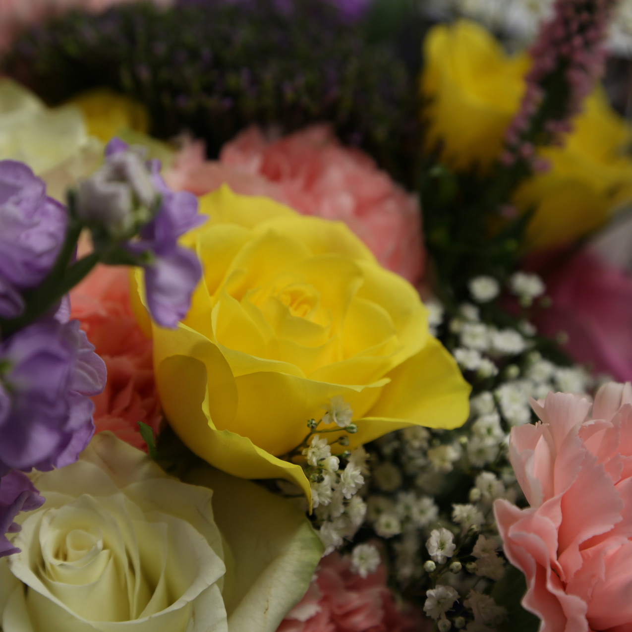 Flowers from Inspirations