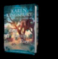 3D bookshot_pagesout_print (1).png