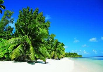 Desroches Island Seychelles - remote beautiful beaches