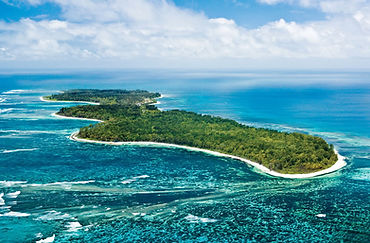 Diving in the Seychelles