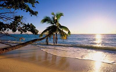 Silhouette Island Beach - IslandStays Seychelles Holiday