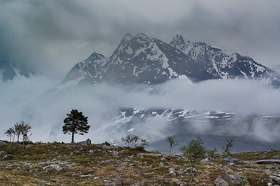Kveikshop Mountain Tundra.jpg