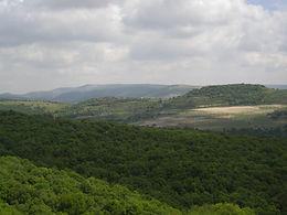 Galileassa