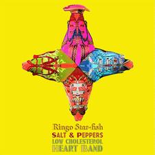 Estrella de mar Ringo