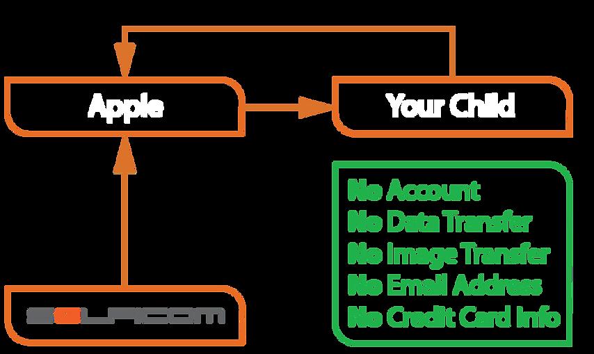 Process Diagram_edited.png