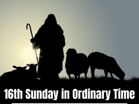 On serving the Good Shepherd's Flock