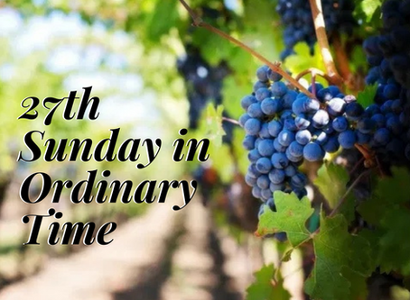 Vineyards and the People of God