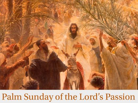 Praise the Son of God, Hosanna to the Lover of All