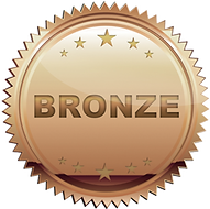 Bronze-Icon.png