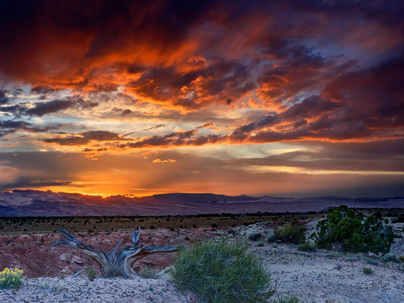 Ahh....Beautiful! Weather is breaking this week. Get out and take a look around!