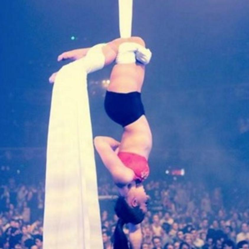 Aerial Performance Skills w/- Shannon Vitalli