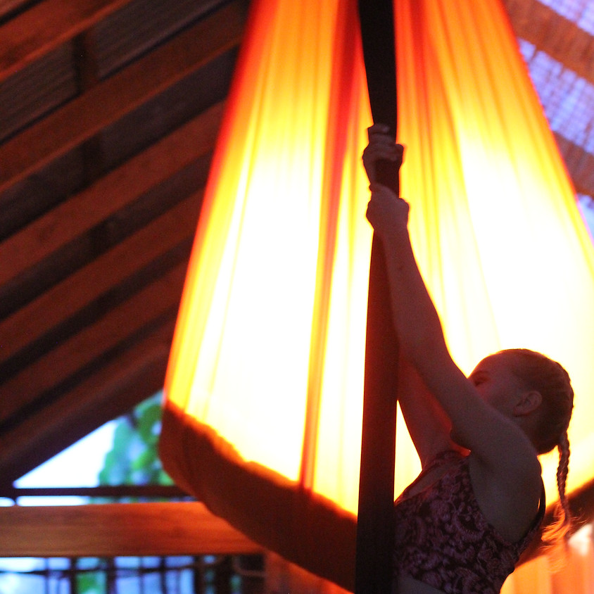Aerial Silks Beginners Workshop