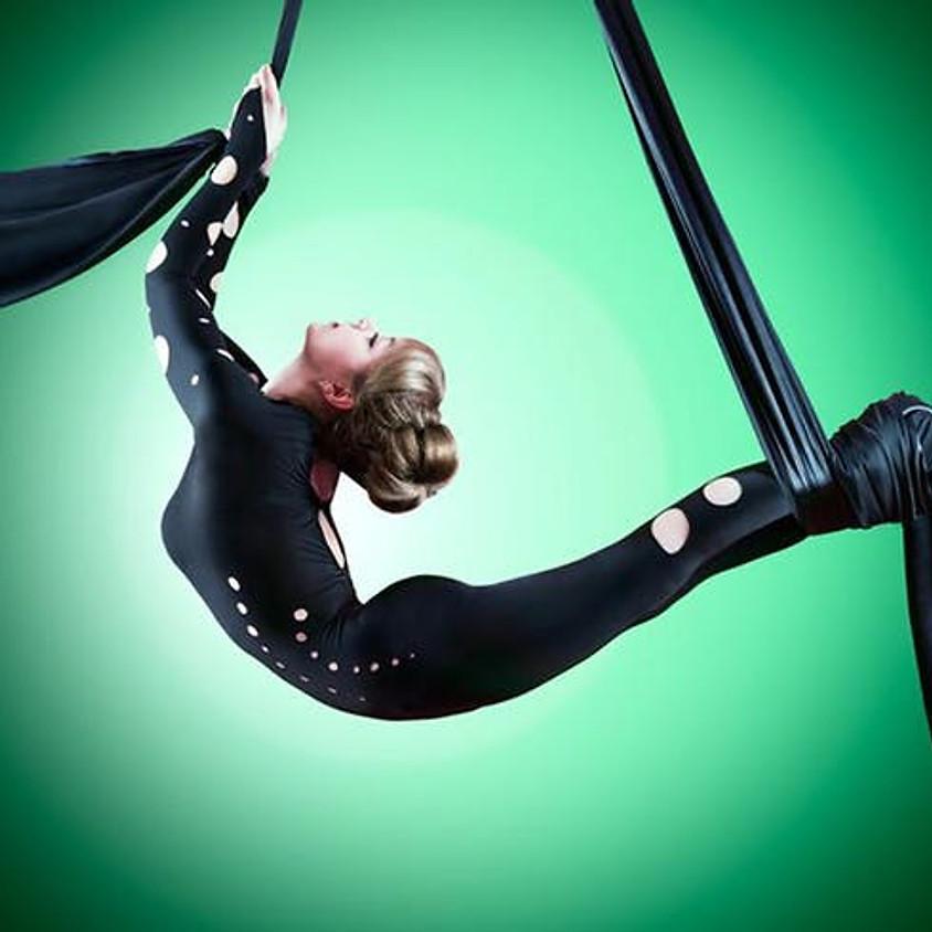 Aerial Silks Workshop w/- Cycas Circus