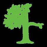drvo 360 2.png