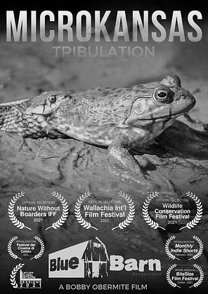 Dramatic Rhino Documentary Movie Poster