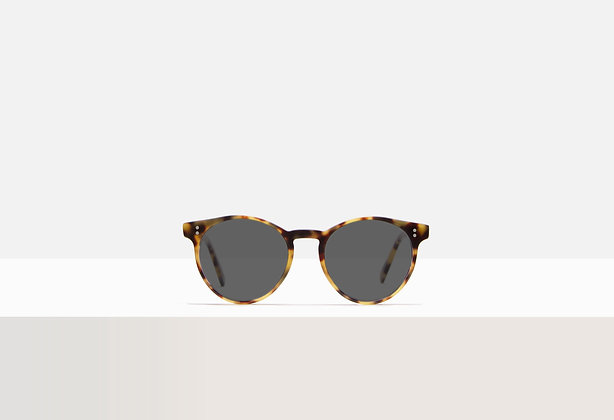 Sunglasses - Bowie in Honey Amber