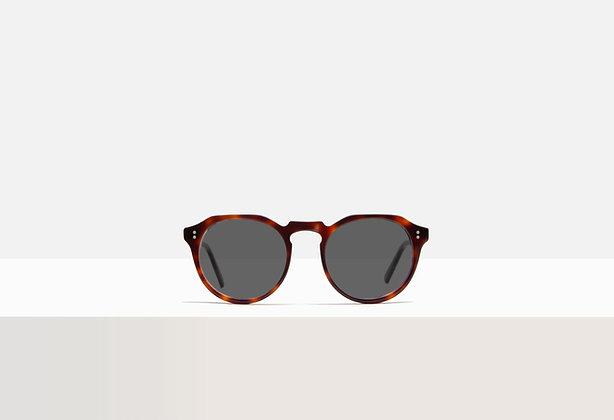 Sunglasses - Faulkner in Tuscan Tortoise