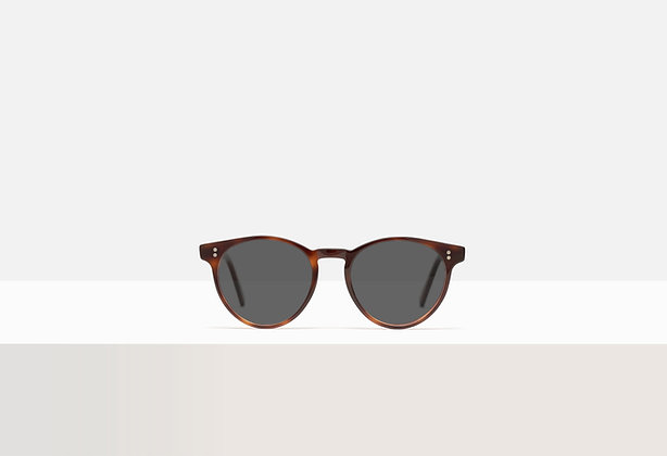 Sunglasses - Bowie in Tuscan Tortoise