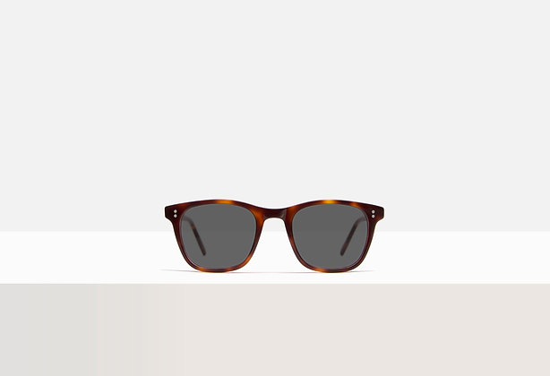 Sunglasses - Coppola in Tuscan Tortoise
