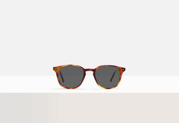 Sunglasses - Murray in Tuscan Tortoise