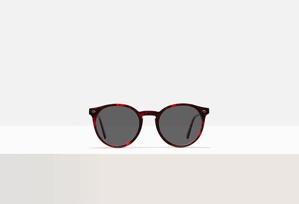 Sunglasses - Carson in Caramel