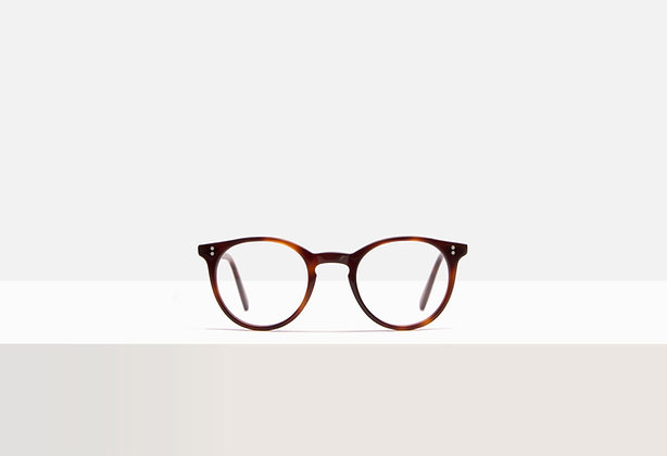 Hermann in Tuscan Tortoise