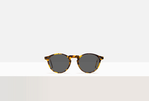 Sunglasses - Woolf in Honey Amber