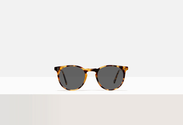 Sunglasses - Franklin in Honey Amber