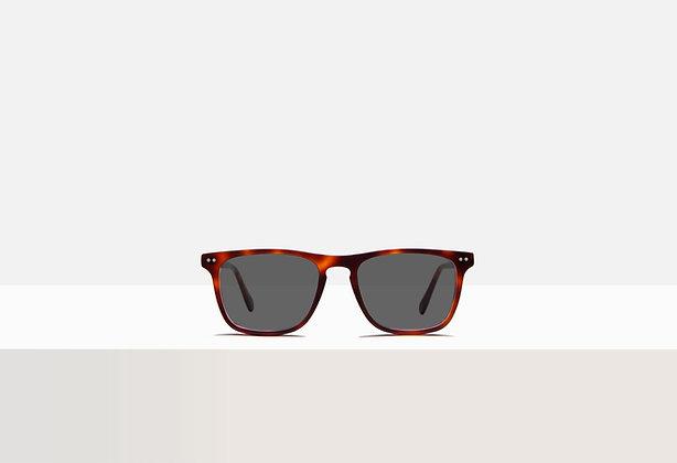 Sunglasses - Boyd in Tuscan Tortoise