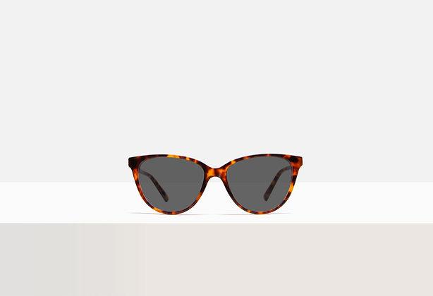 Sunglasses - Kafka in Red Sorghum